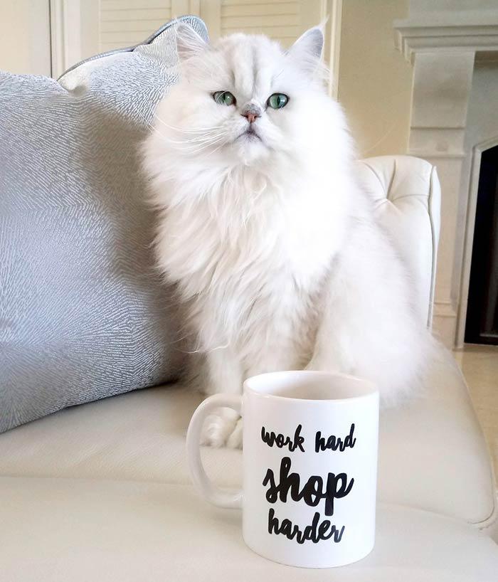 Angela Nuran's Outlet Shop, work hard, shop harder mug