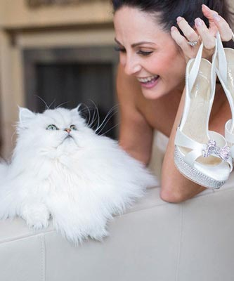 Image of bride holding wedding shoes smiling at white fluffy cat.