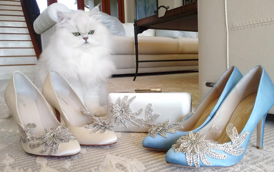 Bentley the cat overlooking a clutch and wedding shoes