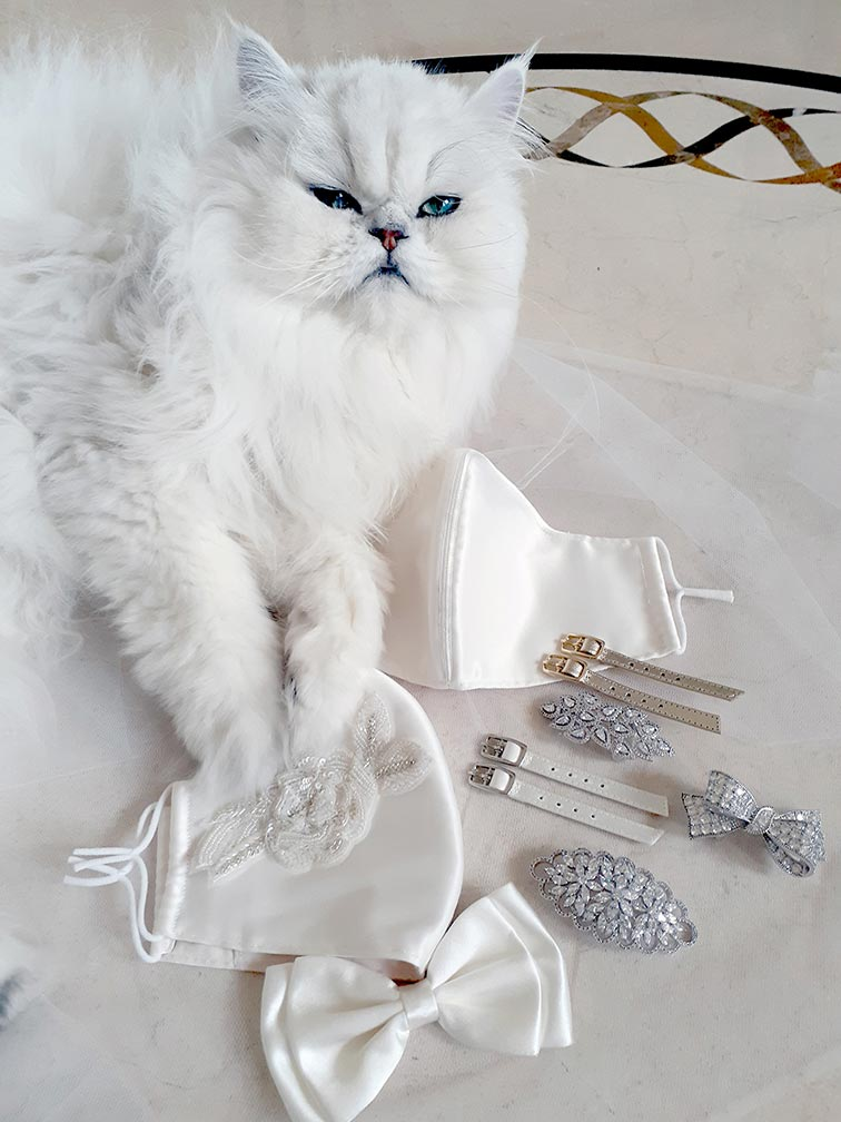 Accesories brooches face masks and straps with Bentley the cat